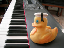Forget about the damn duck...
