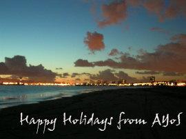 Happy Holidays from AYoS
