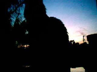 Duke at Sunset